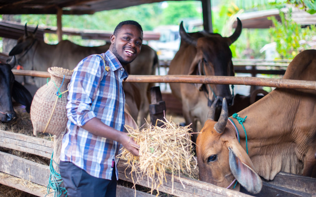 Ranch du Tuy Au Burkina Faso